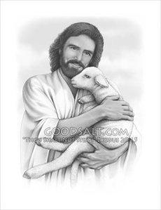 jesus-with-a-lamb-GoodSalt-dmtag0044